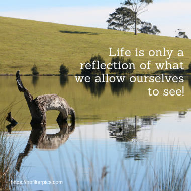 life reflection