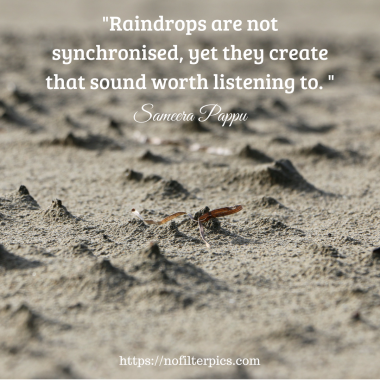 _Raindrops are not synchronised, yet they create that sound worth listening to. _ (1)